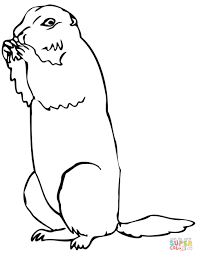 Small Picture Brown Prairie Dog coloring page Free Printable Coloring Pages