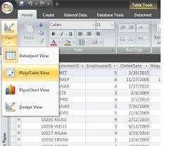 Instead Of Queries Use The Access 2007 Pivottable View