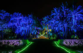 fairchild garden brought to life by new night garden event
