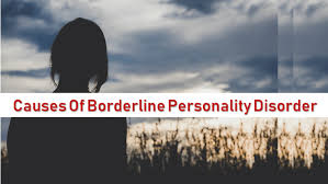 Image result for is borderline personality disorder genetic