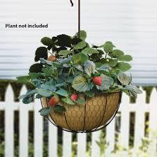 Panacea Rustic Farmhouse Hanging Basket With Burlap Liner (84278) - Ace  Hardware
