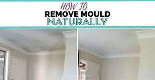 how to remove mould naturally clean