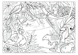 Amazon Rainforest Animals Coloring Pages Animal Capture Of
