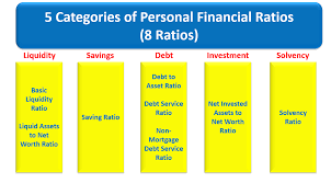 Asset Net Worth Personal Financial Health Check And Financial Ratio Before