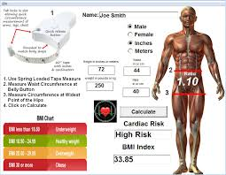 Waist Hip Ratio Calculator For Posture Pro