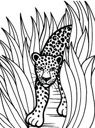rainforest coloring pages printable coloring pages animal jaguar coloring pages free printable animal coloring pages printable