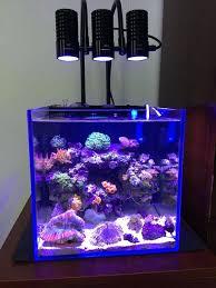 full image for light marine sea tank c grow mini aquarium reef white led lighting for