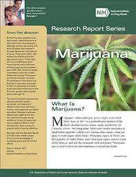 marijuana health research