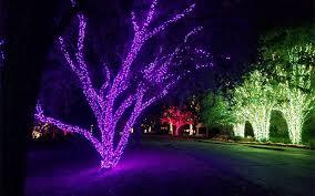 nashville tn commercial holiday tree wrap lighting