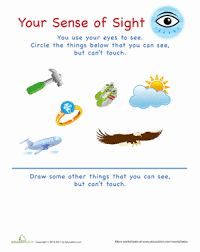 besides Sense Of Hearing Activities Tags Captain Senses Worksheets My Five further  moreover Five Senses together with The Five Senses in the Spring Time   Printable worksheets as well 5 Senses  Sight Matching   Worksheet   Education furthermore 5 senses worksheet for kids  5    Crafts and Worksheets for additionally Five Senses Worksheet For Kids 1 Corpo Humano Pinterest Worksheets moreover Five Senses Activity for kindergarten and 1st Grade   Smell together with  together with . on sense smell worksheets for preschool