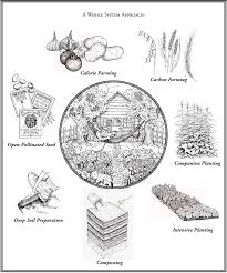 The 8 Principals Of Sustainability Kootenay Society For