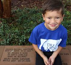 Make A Wish Mission Statement Wish Granting Dreams Come True Jacksonville