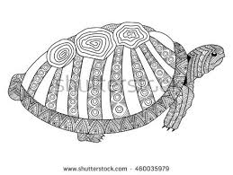 Small Picture Drawing Turtle Coloring Page Coloring Book Stock Vector 460035979