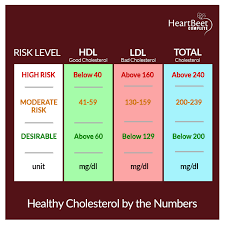Cholesterol Chart Cholesterol Chart Heartbeet Complete Official Website