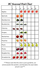 Seasonal Fruit Chart Seasonal Fruit Chart Cjs Market