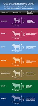 dog crates size chart sizing chart for crate crates chart and dog