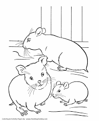 Small Picture Pets Coloring Pages Free Printable Hamster Coloring Pages and