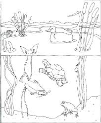 Coloring Pages Water Water Cycle Coloring Pages Water Cycle Coloring