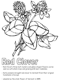 Small Picture Red Clover coloring page