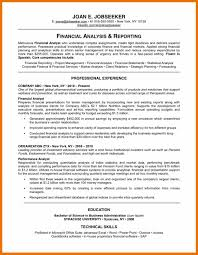 9 Resume Professional Profile Examples Budget Reporting
