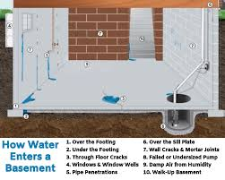 basement water 10 causes my