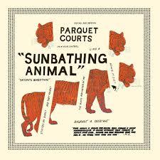 Animal Photo Albums Parquet Courts Sunbathing Animal Album Reviews
