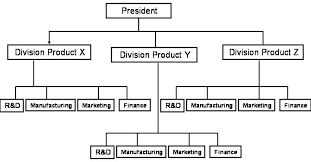 Pepsico Structure Chart People Management At Pepsi Co