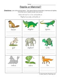 Mammal VS Reptile Worksheet - Pictures