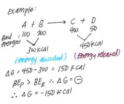 Free Energy Of Formation Chart Structural Biochemistry Volume 1 Wikibooks Open Books For