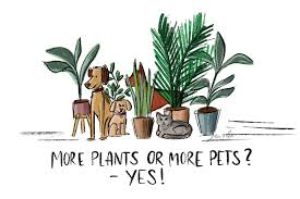 pet safe plants and plants that are not