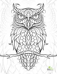 Small Picture diceowl free printable adult coloring pages