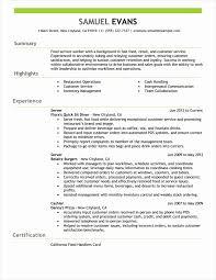 Resume Summary Examples Nice Resume Summary Example Best Sample