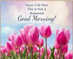 an auious day good morning status