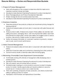 Responsibility In Resume Examples