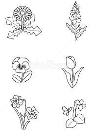 夏の花塗り絵 イラスト素材 2854506 フォトライブラリー