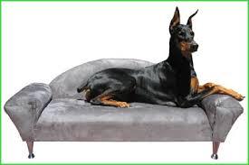 big dog furniture. kika dog bed sofas big furniture
