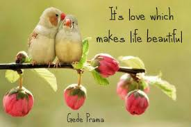Love Make Life Beautiful Quotes