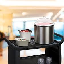 Ice Cream Server Coldmaster Ice Cream Server Lid Shroud Carlisle Foodservice