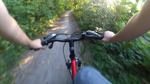 Bicycle Action Camera Forest Hand Rudder Stock Footage Video