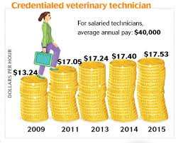 Veterinarian Technician Salary Celebrate National Veterinary Technician Week With Us