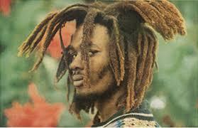 The Rastafarians By Leonard E Barrett Sr Classy Rastafarian