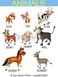 Pet Animal Picture Chart Animal Chart