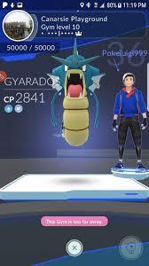 A Little Bit About Gym Battles Pokemon Go Amino