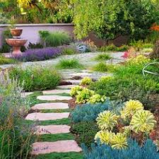 Small Picture Southern California Drought Tolerant Landscaping Drought