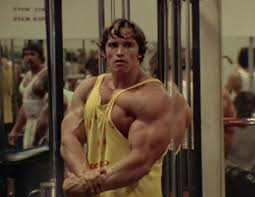 arnie looking at his triceps in the mirror