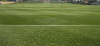 green grass football field. IMG_2138 Green Grass Football Field R