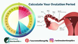 How To Calculate Your Ovulation Time Using Your Menstrual Cycle