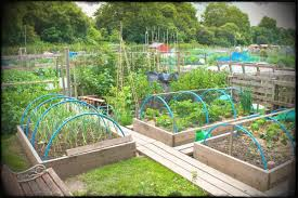 full size of backyard vegetable garden ideas best outdoor and patio raised small remodel cost diy
