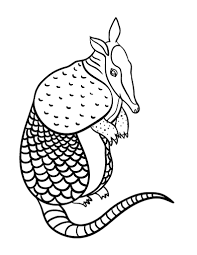 Small Picture Free Armadillo Coloring Page