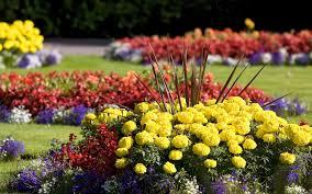 Small Picture Flower Garden Designs For Full Sun The Garden Inspirations